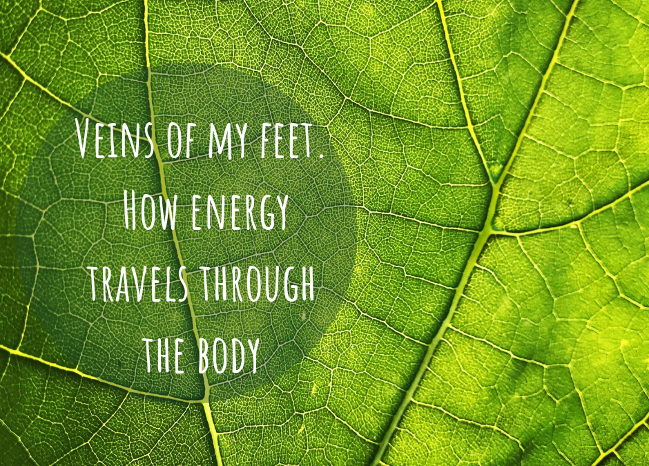 VEINS OF MY FEET ~ HOW ENERGY TRAVEL THROUGH THE BODY